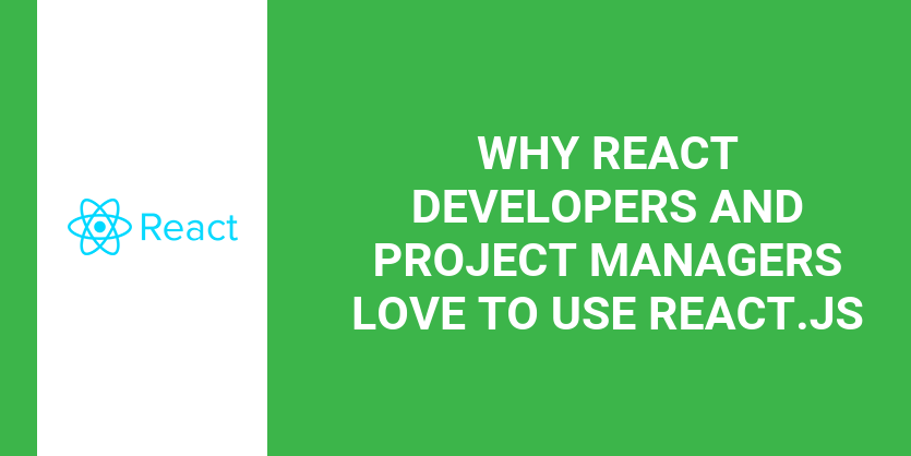Why React Developers and Project Managers Love to use React.js