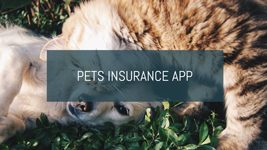 Pets Insurance App
